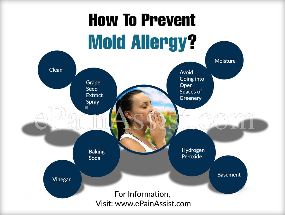 How To Prevent Mold Allergy?