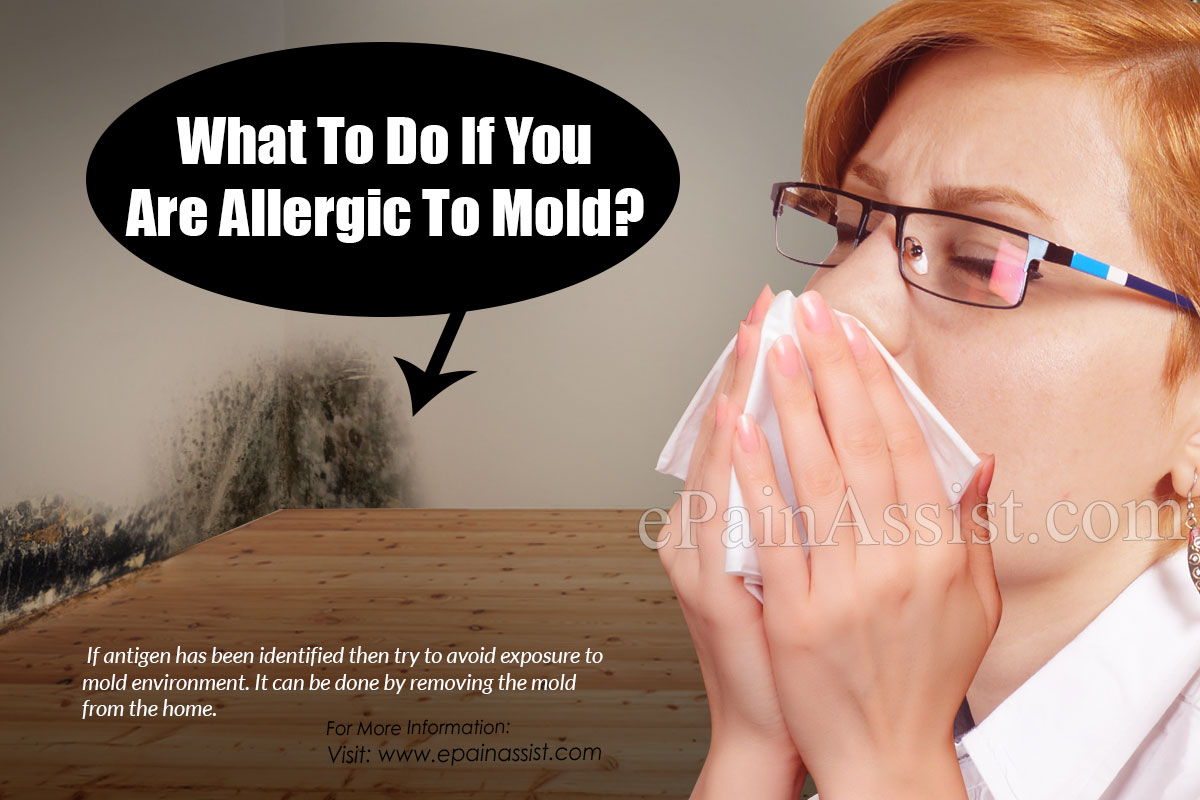 What To Do If You Are Allergic To Mold?