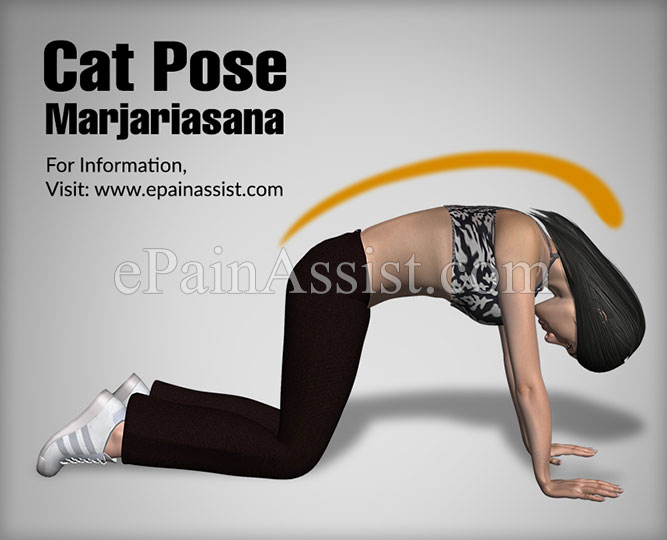 How to Do Marjariasana or the Cat Stretch Pose?