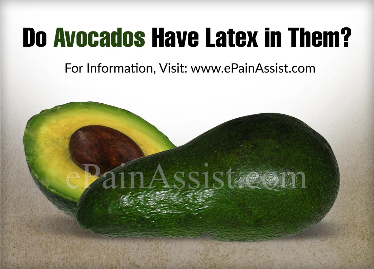 Do Avocados Have Latex in Them?