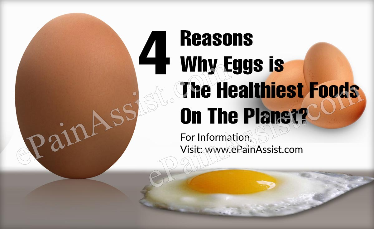 4 Reasons Why Eggs is The Healthiest Foods On The Planet?