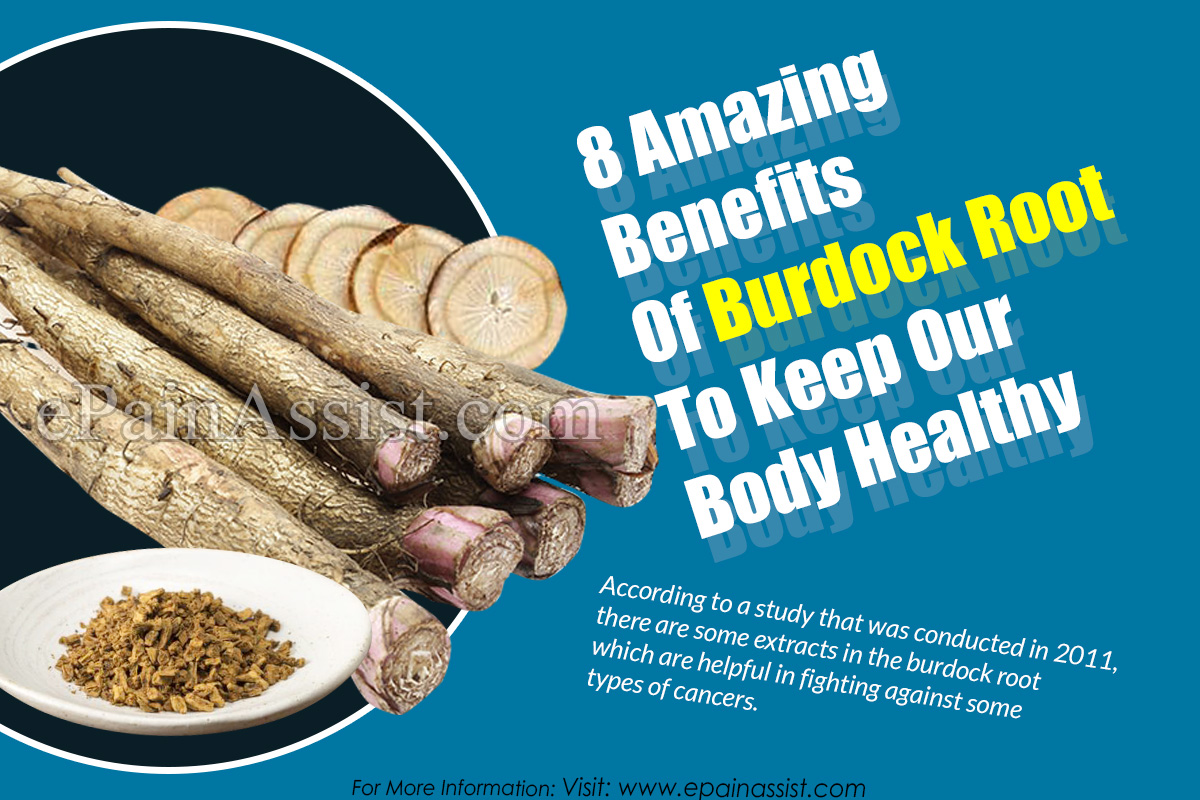 8 Amazing Benefits Of Burdock Root To Keep Our Body Healthy