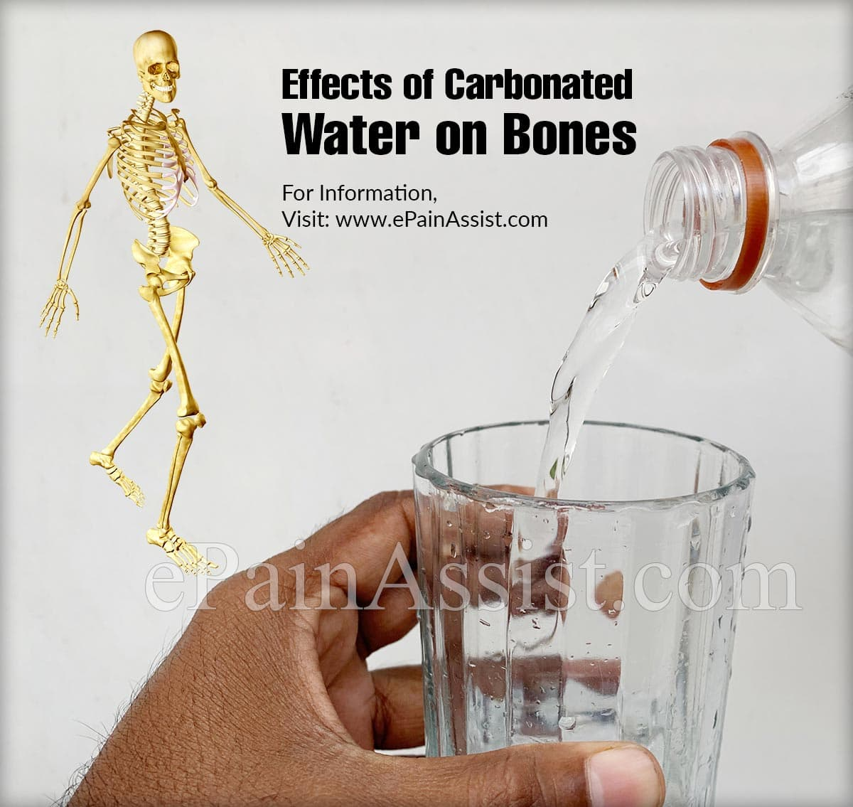 Effects of Carbonated Water on Bones