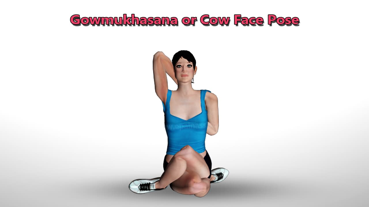 omukhasana or Cow Faced Yoga Pose for Upper Back Pain