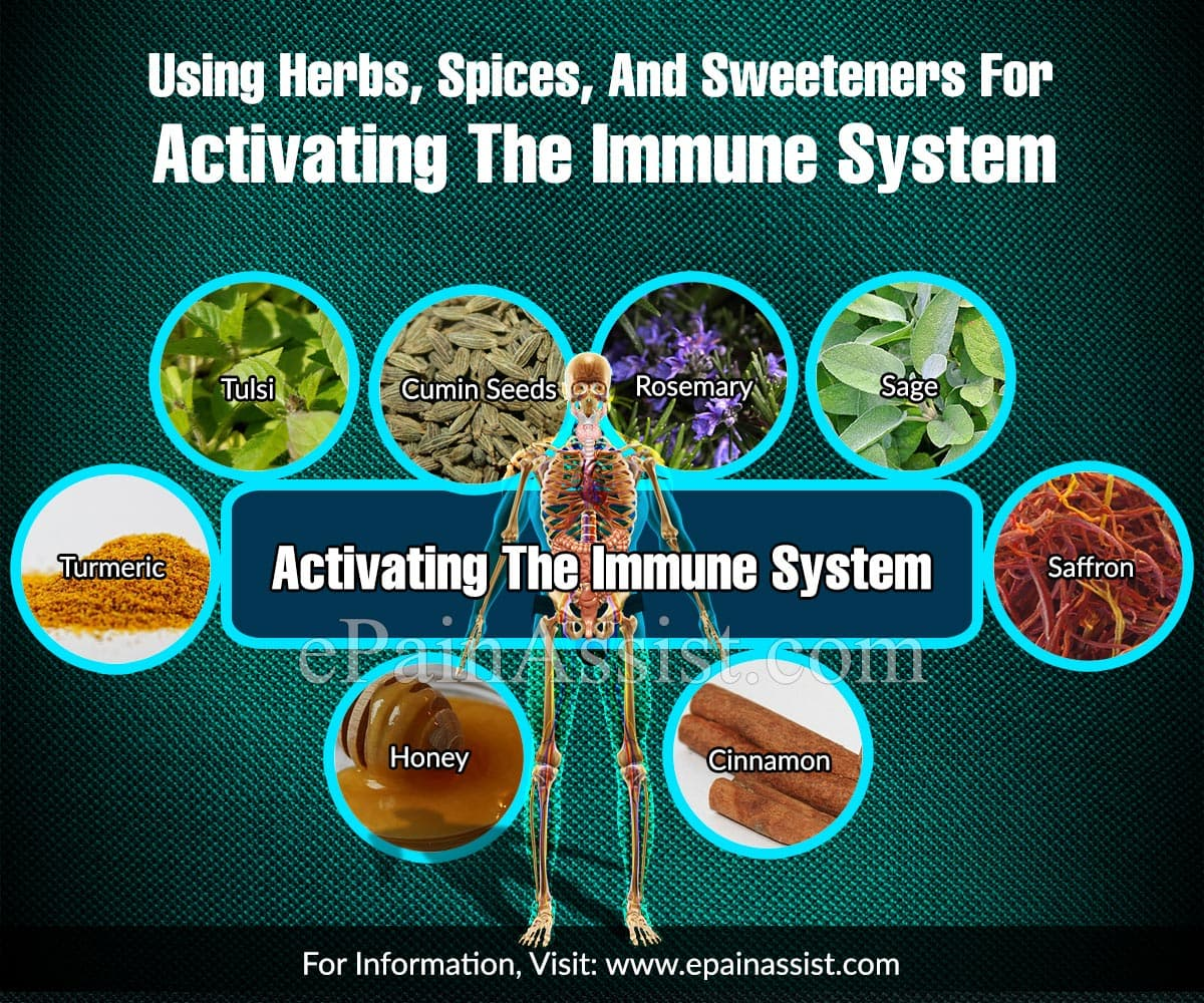 Using Herbs, Spices, And Sweeteners For Activating The Immune System