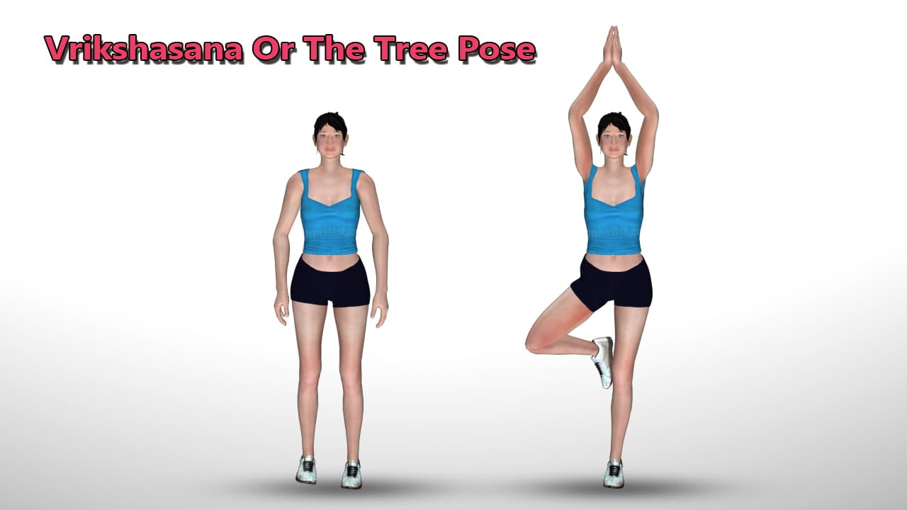Vrikshasana (Tree Pose) For A Pulled Groin