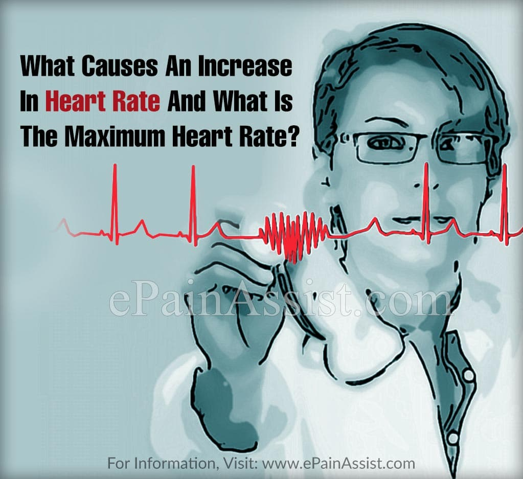 What Causes An Increase In Heart Rate And What Is The Maximum Heart Rate?