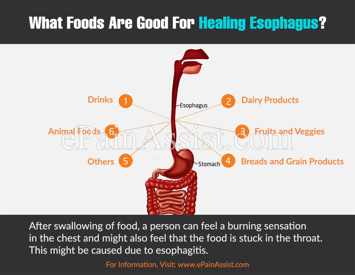 What Foods Are Good For Healing Esophagus?