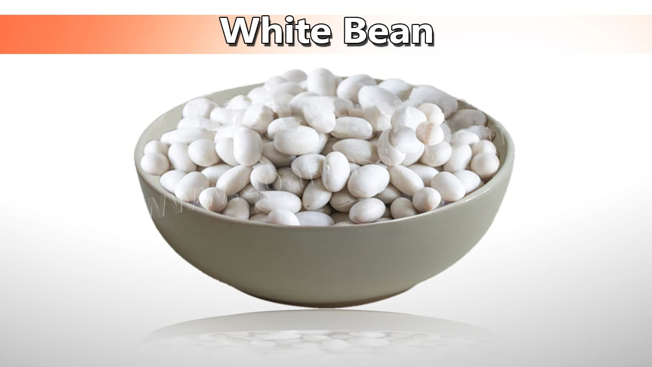 White Bean Good for High Blood Pressure