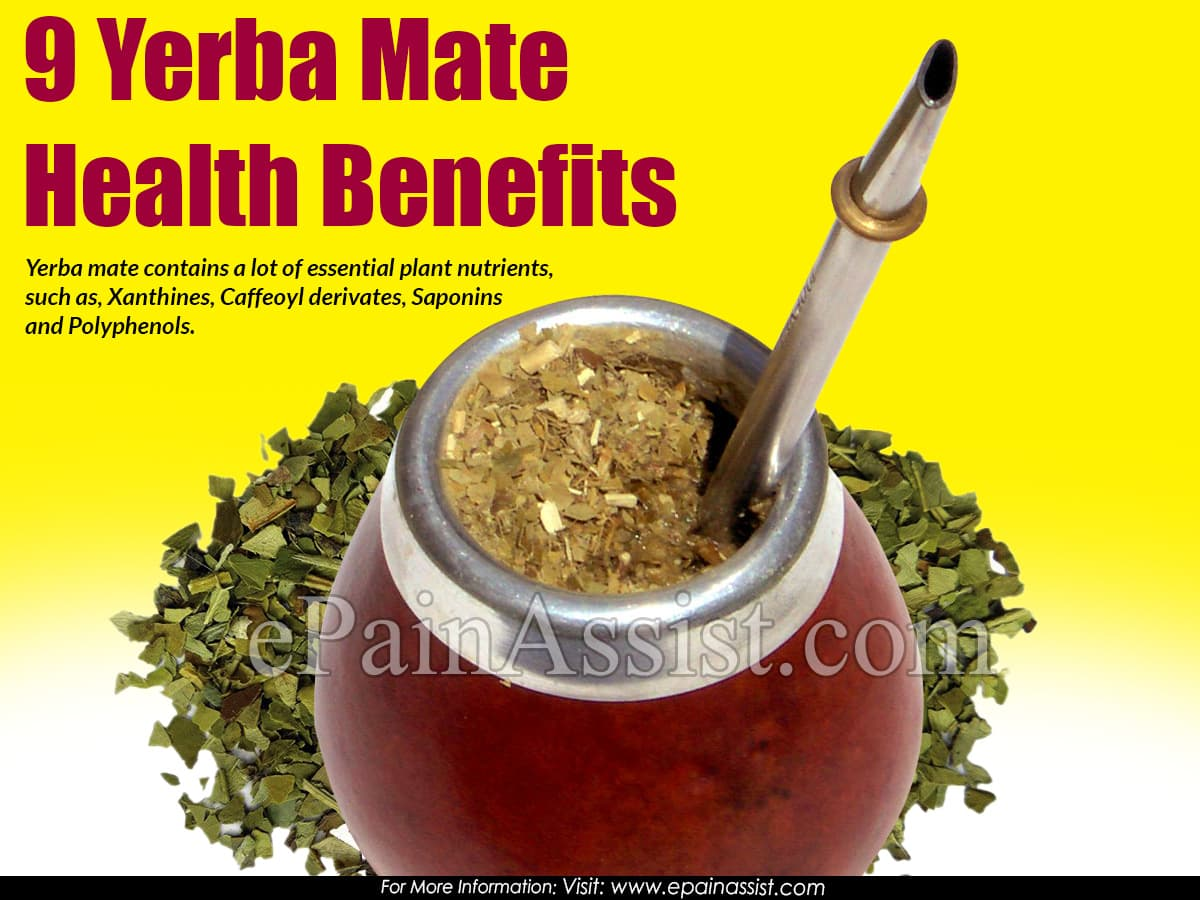 9 Yerba Mate Health Benefits & Ways to Make Yerba Mate Tea