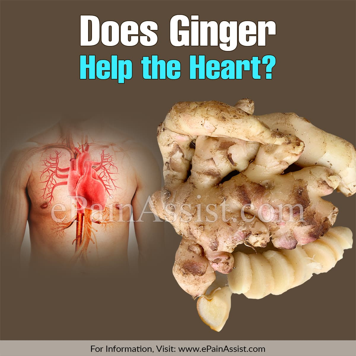 Does Ginger Help the Heart?