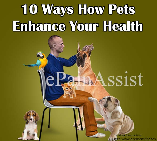 10 Ways How Pets Enhance Your Health