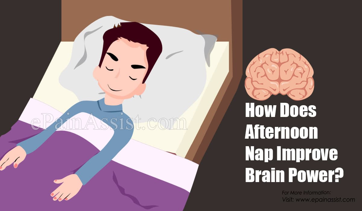 How Does Afternoon Nap Improve Brain Power?