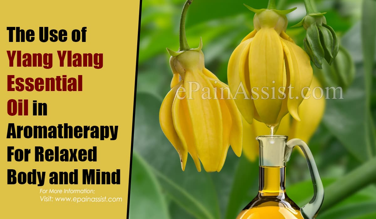 The Use of Ylang Ylang Essential Oil in Aromatherapy For Relaxed Body and Mind