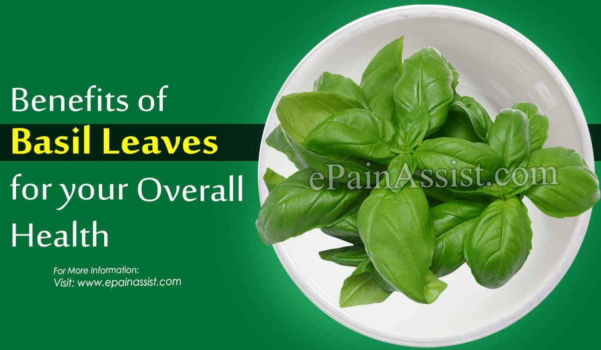 Benefits of Basil Leaves for Skin
