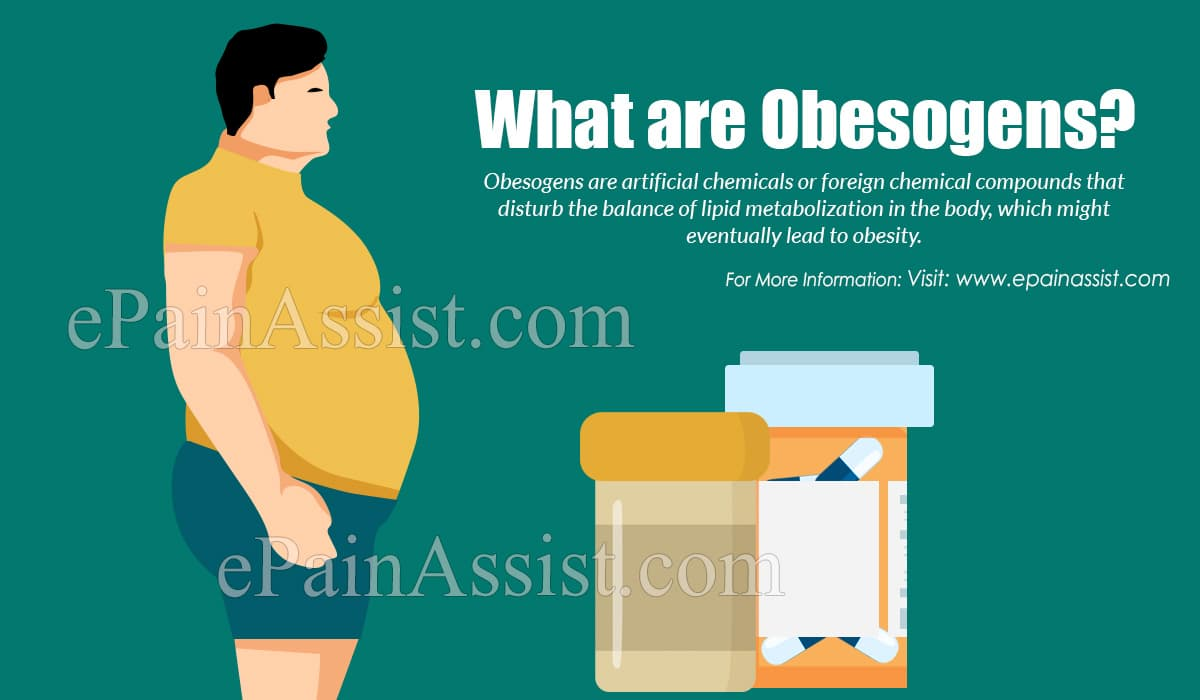 What are Obesogens?