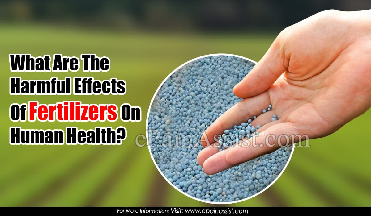 What Are The Harmful Effects Of Fertilizers On Human Health?