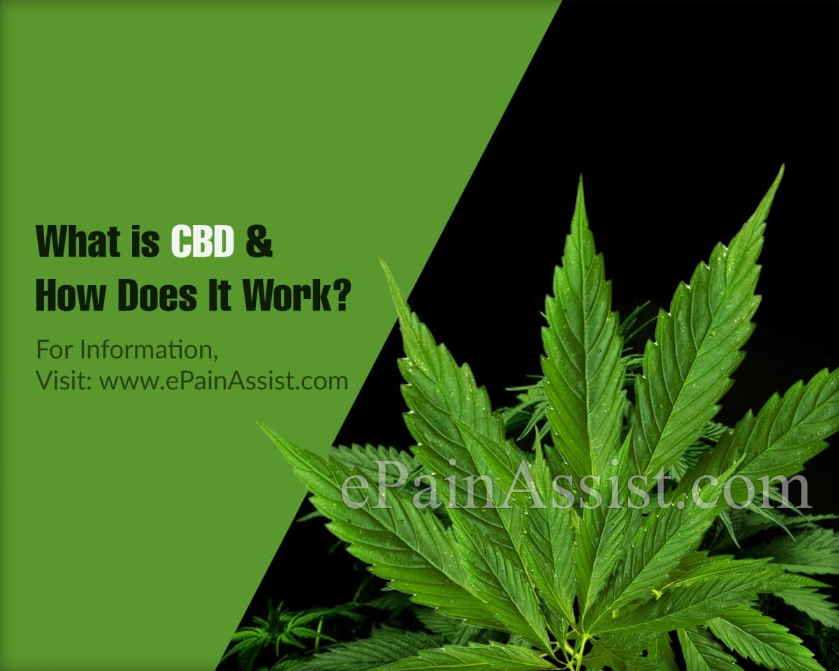 What is CBD & How Does It Work?