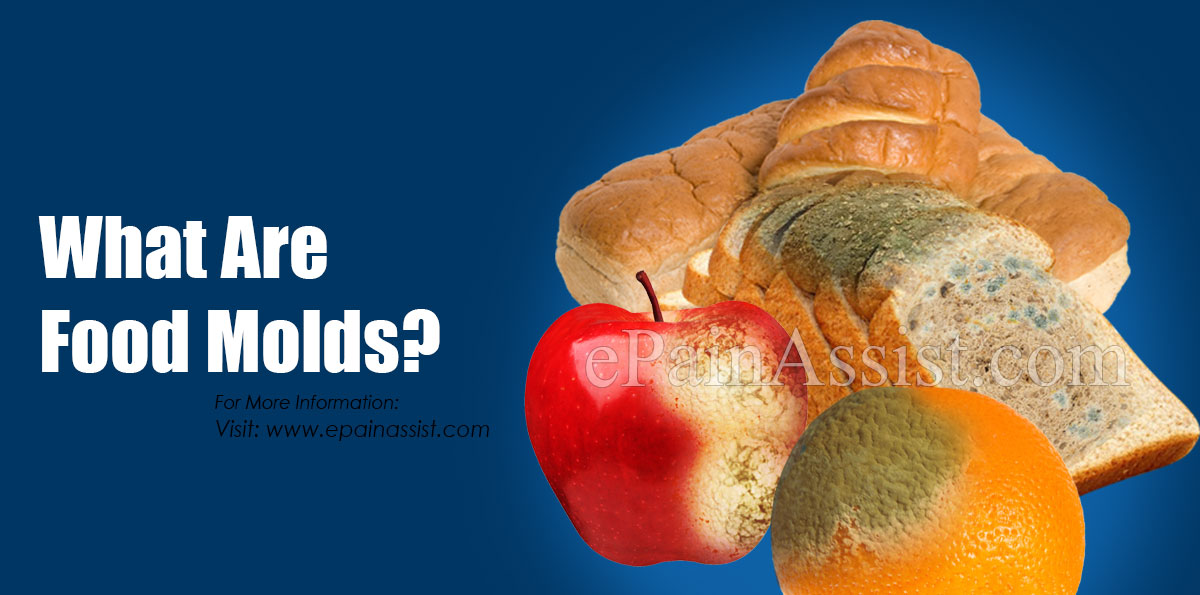 What Are Food Molds?