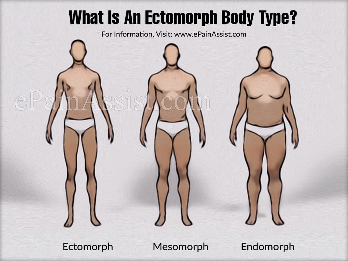 What Is An Ectomorph Body Type?
