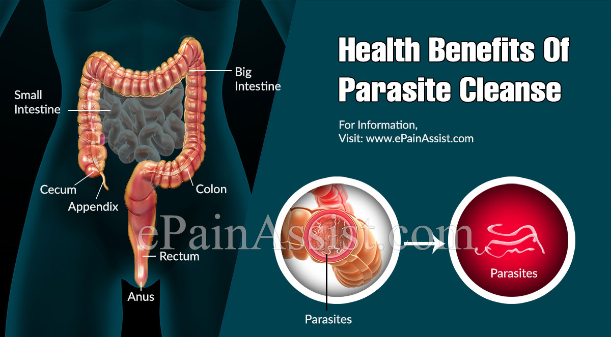 Health Benefits Of Parasite Cleanse