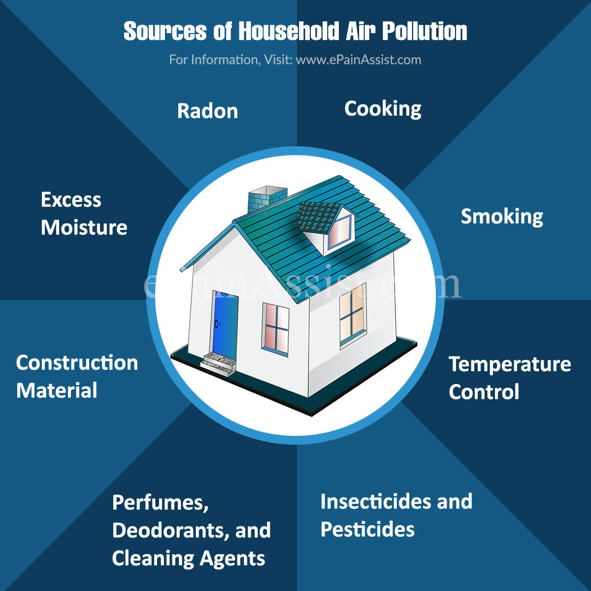 Sources of Household Air Pollution & its Health Effects, Strategies to Deal With it, Risks