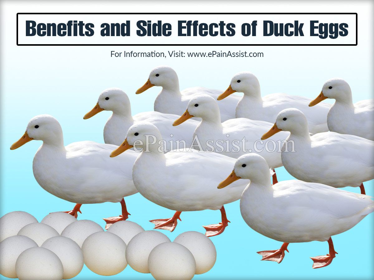 Benefits and Side Effects of Duck Eggs