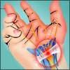 Jobs for Carpal Tunnel Sufferers: Best and Worst Jobs for Carpal Tunnel Syndrome