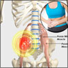 Psoas Muscle Pain & Techniques to Release Psoas Muscle