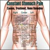 Constant Stomach Pain: Causes, Treatment, Home Remedies