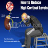 How to Reduce High Cortisol Levels?