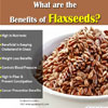 What Are Flaxseeds & What Are Its Benefits?