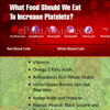 What Food Should We Eat To Increase Platelets?