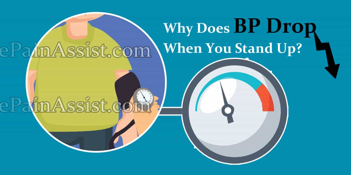 Why Does BP Drop When You Stand Up?