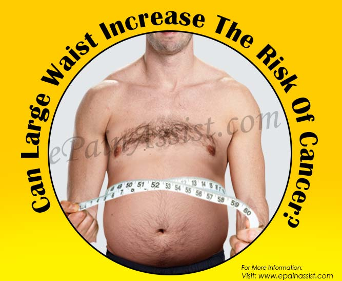 Can Large Waist Increase The Risk Of Cancer?