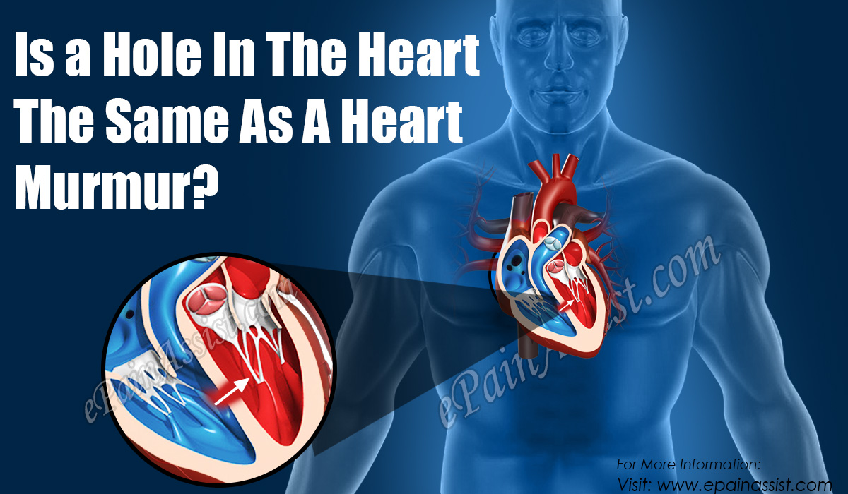 Is a Hole In The Heart The Same As A Heart Murmur?