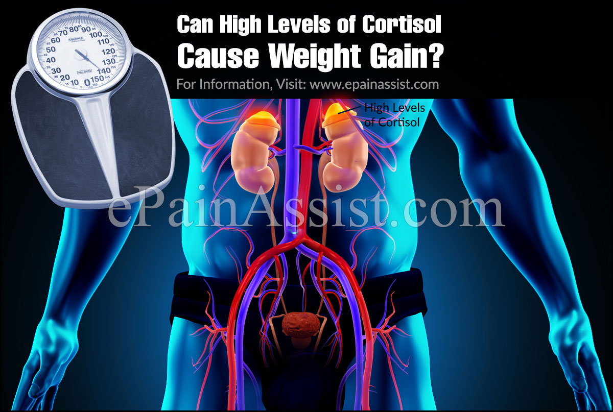 Can High Levels of Cortisol Cause Weight Gain?