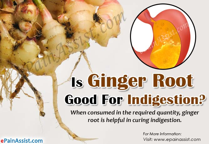 Is Ginger Root Good For Indigestion?