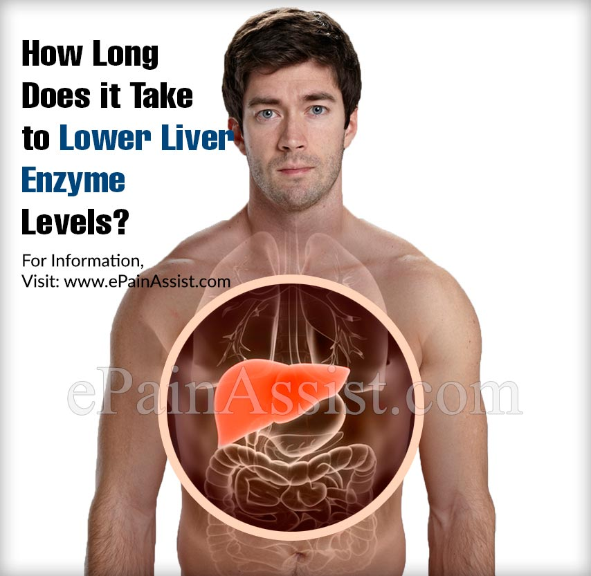 How Long Does it Take to Lower Liver Enzyme Levels?