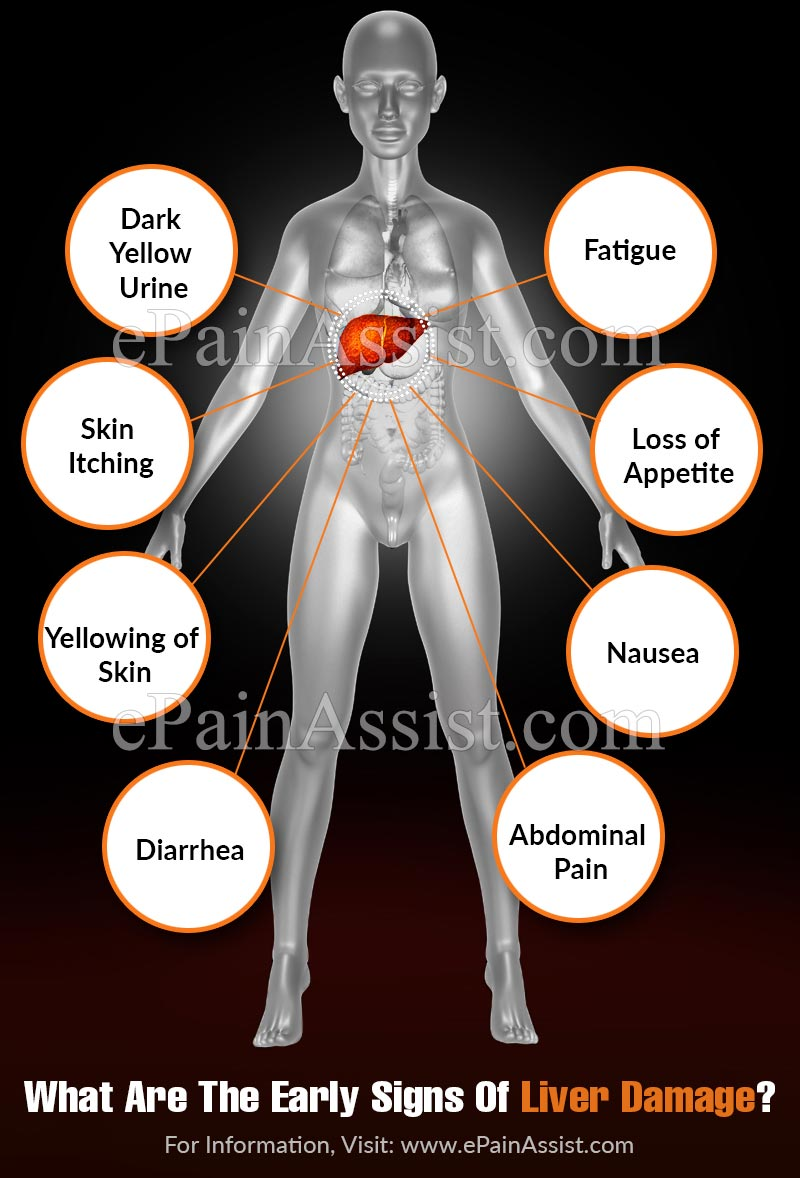 What Are The Early Signs Of Liver Damage?
