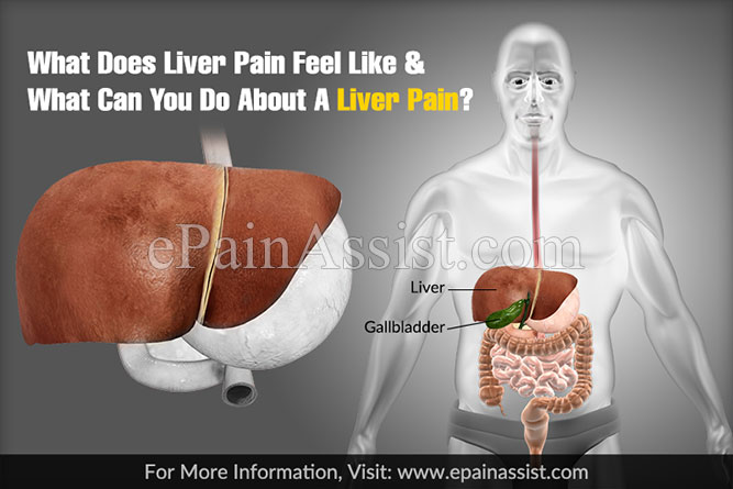 What Does Liver Pain Feel Like & What Can You Do About A Liver Pain?