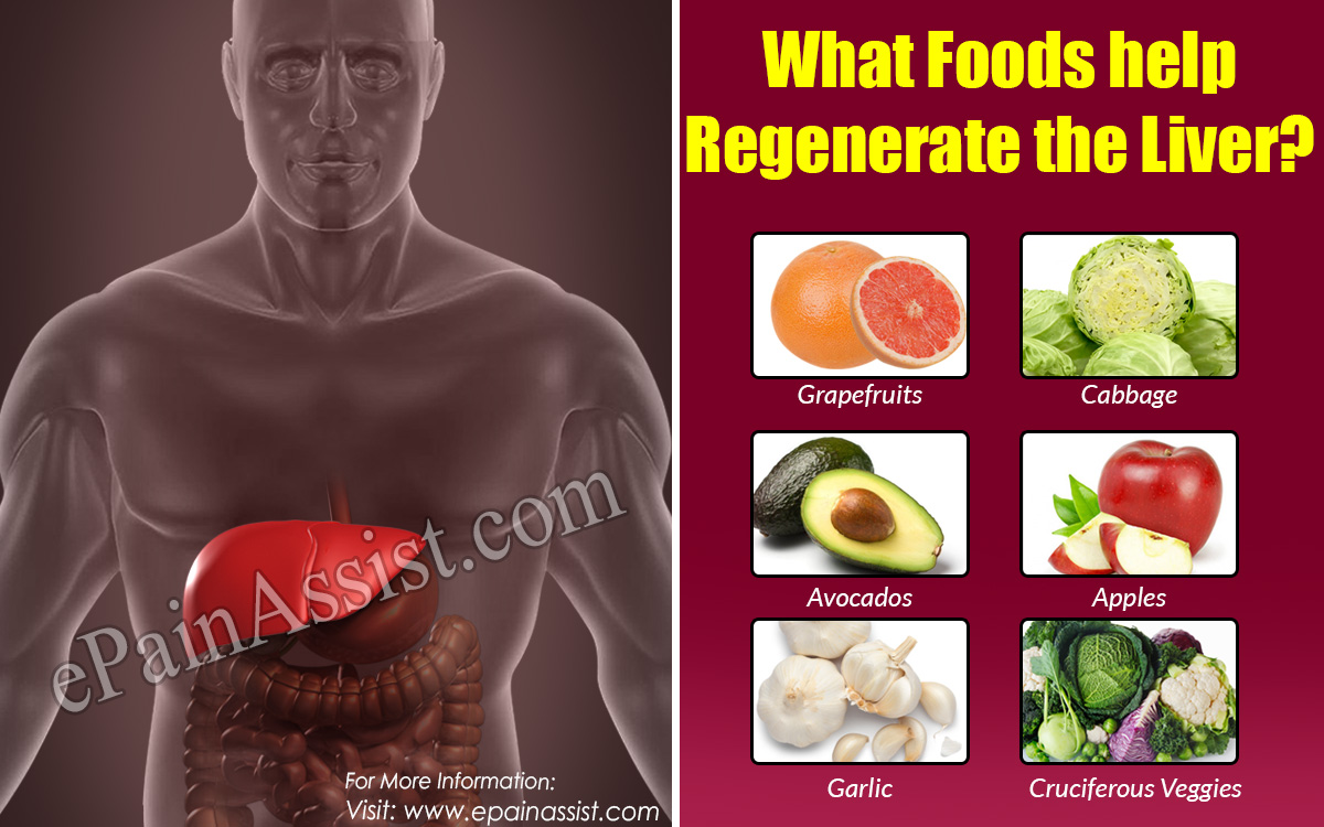 What Foods help regenerate the Liver?