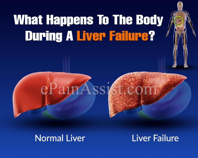 What Happens To The Body During A Liver Failure?