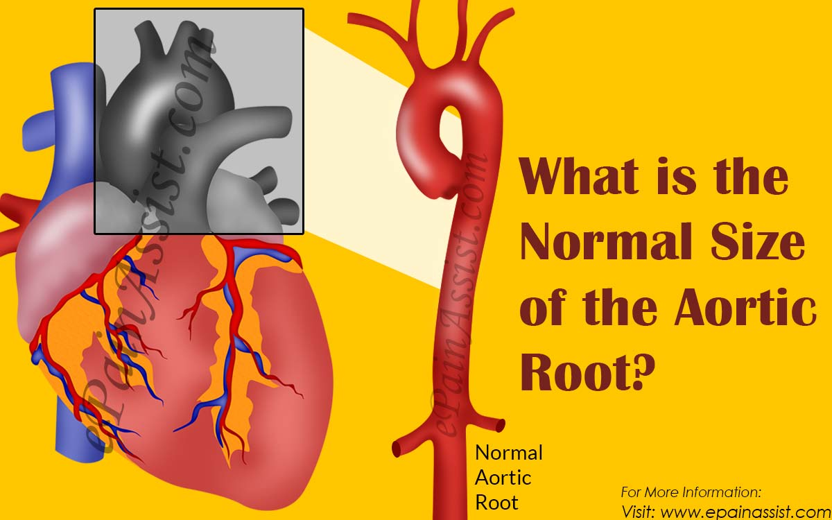 What is the root 63