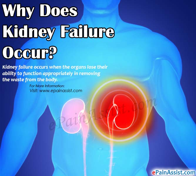 Why Does Kidney Failure Occur?