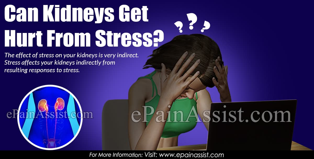 Can Kidneys Get Hurt From Stress?