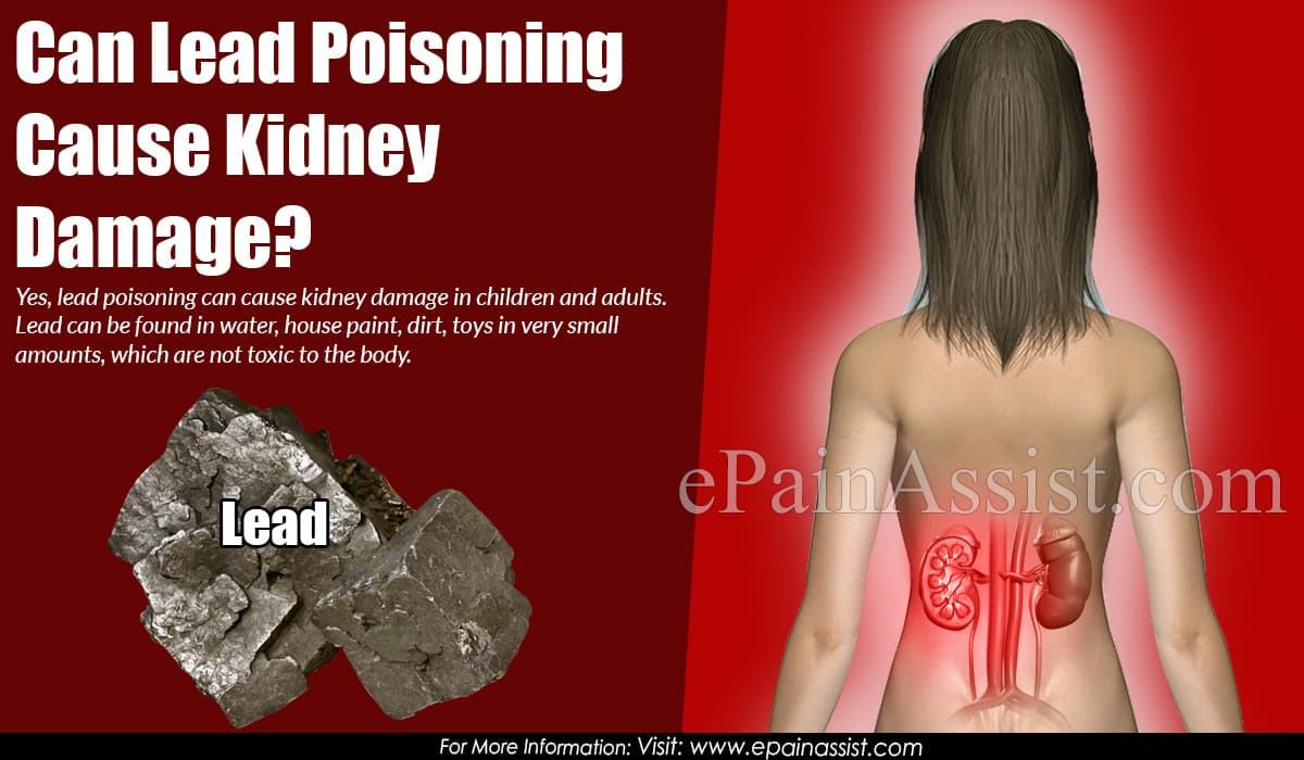 Can Lead Poisoning Cause Kidney Damage?