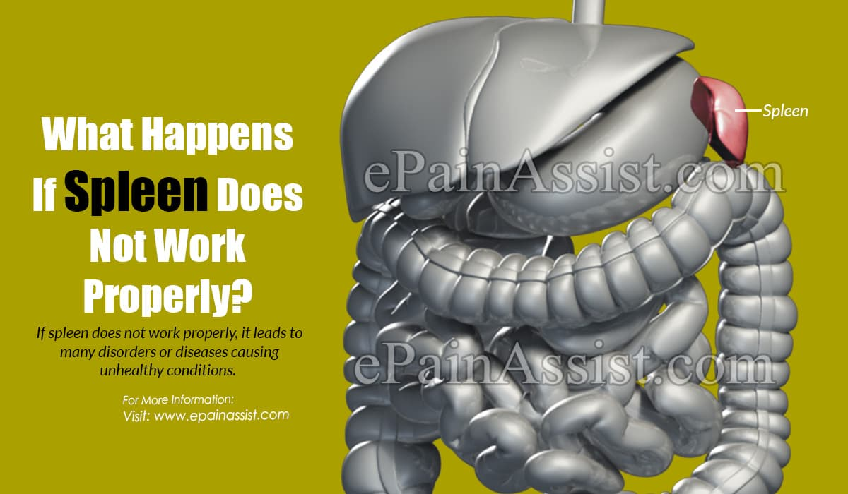 What Happens If Spleen Does Not Work Properly?