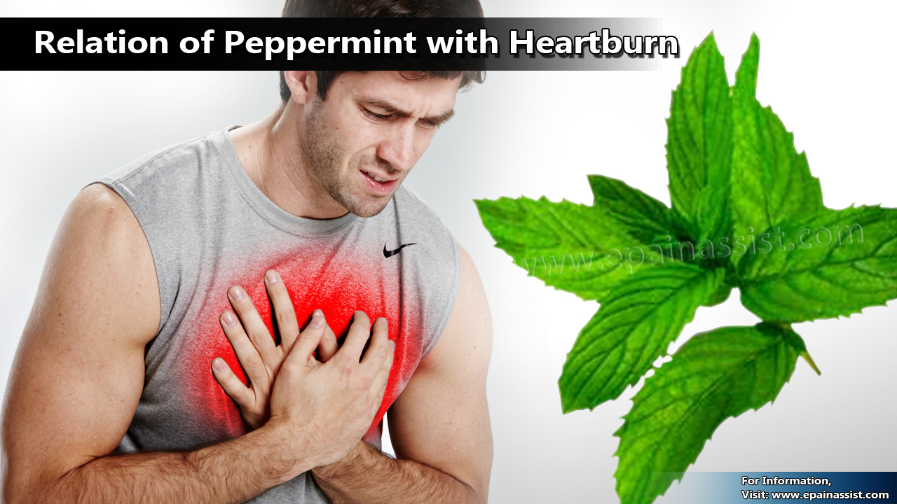 Relation of Peppermint with Heartburn