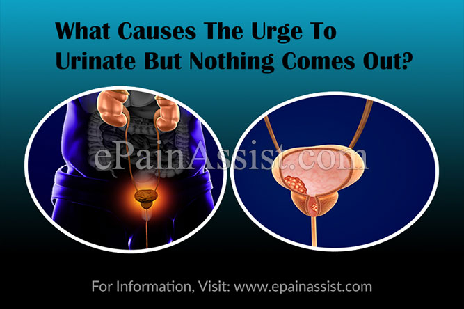 What Causes The Urge To Urinate But Nothing Comes Out?